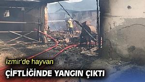 İzmir'de hayvan çiftliğinde yangın çıktı