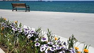 Kuşadası Belediyesi'nden sahil şeridine yaz dokunuşu