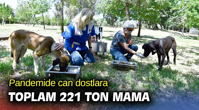 Pandemide can dostlara toplam 221 ton mama