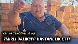 Zehirli trakonya balığı İzmirli balıkçıyı hastanelik etti
