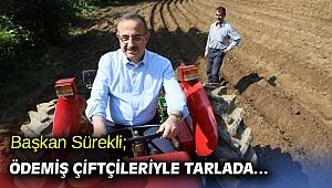 Başkan Sürekli; Ödemiş çiftçileriyle tarlada…