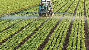EİB gıda güvenliğini en üst seviyede tutuyor