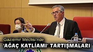 Gaziemir Meclisi'nde 'ağaç katliamı' tartışmaları