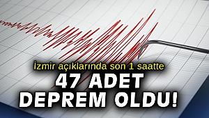 AFAD'dan açıklama: İzmir açıklarında son 1 saatte 47 adet deprem meydana geldi