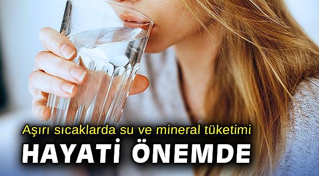Aşırı sıcaklarda su ve mineral tüketimi hayati önemde