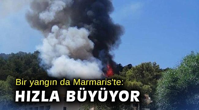 Bir yangın da Marmaris'te: Hızla büyüyor