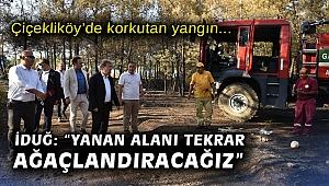 """Çiçekliköy'de korkutan yangın… İduğ: """"Yanan alanı tekrar ağaçlandıracağız"""""""