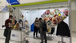 Ege Bölgesi'nden Güney Kore'ye yapılan ihracat ikiye katlandı