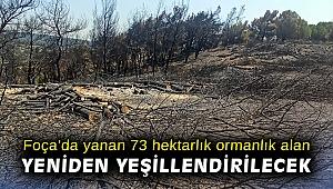 Foça'da yanan 73 hektarlık ormanlık alan yeniden yeşillendirilecek