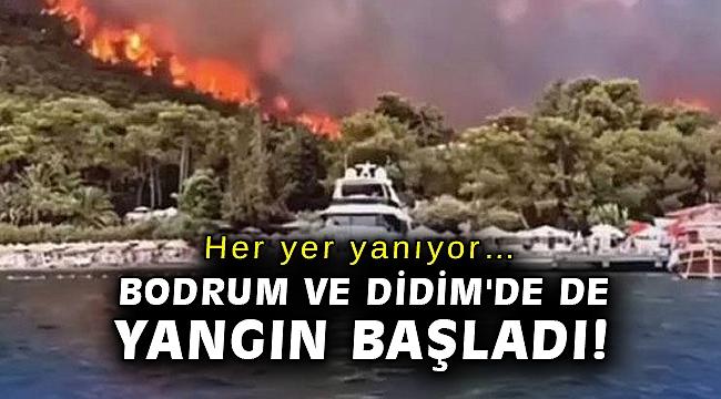 Her yer yanıyor… Bodrum ve Didim'de de yangın başladı!