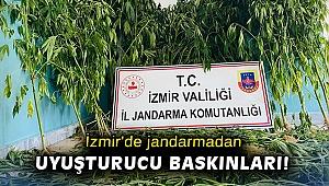İzmir'de jandarmadan uyuşturucu baskınları: 12 gözaltı