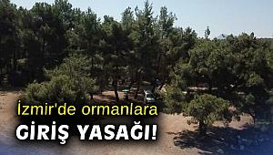 İzmir'de ormanlara giriş yasağı!