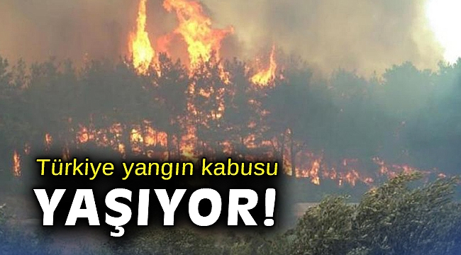 Türkiye yangın kabusu yaşıyor!