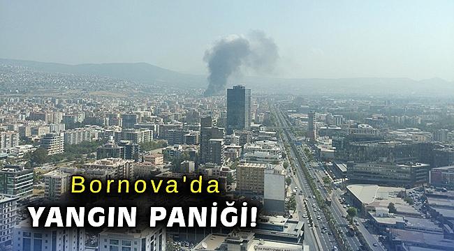 Bornova'da yangın paniği!