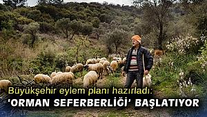 """Büyükşehir yangına dirençli yeşil örtü için """"orman seferberliği"""" başlatıyor"""
