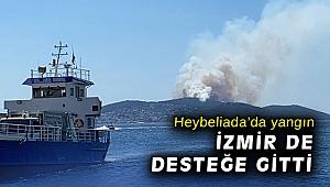 Heybeliada'da orman yangını başladı!