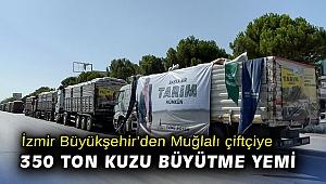 İzmir Büyükşehir'den Muğla'da yangından etkilenen üreticilere 350 ton kuzu büyütme yemi