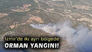 İzmir'de iki ayrı bölgede orman yangını!