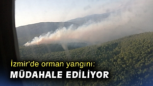 İzmir'de orman yangını: Havadan ve karadan müdahale ediliyor