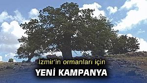 """İzmir'in ormanları için yeniden """"İzmir dayanışması"""""""