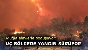 Muğla alevlerle boğuşuyor: Üç bölgede yangın sürüyor