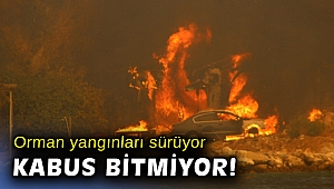 Sağlık Bakanı Koca yangın bölgelerindeki son durumu paylaştı