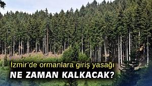 İzmir'de ormanlara giriş yasağı ne zaman kalkacak?