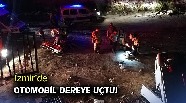 İzmir'de otomobil dereye uçtu!