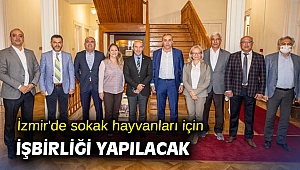 İzmir'de sokak hayvanları için işbirliği yapılacak