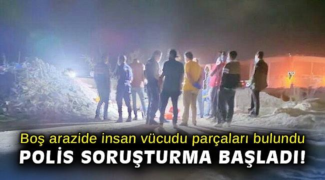 İzmir'de boş arazide insan vücudu parçaları bulundu