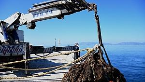 Kuşadası Körfezi'nden 40 metre hayalet ağ çıkarıldı!