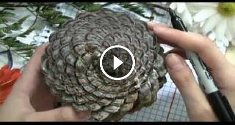 Matematikte Karalamalar: Spiraller, Fibonacci ve Bitki Olmak [1/3]
