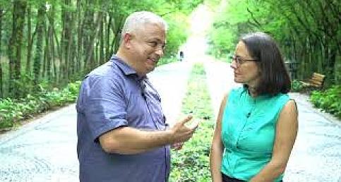İklim Değişikliği ile Mücadelede Ormanların Önemi Nedir?